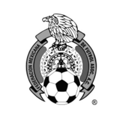 Femexfut-logo-gris